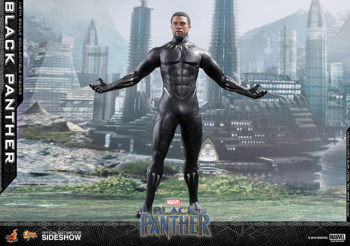 Black Panther Hot Toys Figure