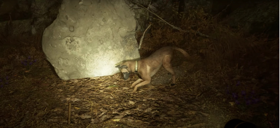 Blair Witch Gameplay Trailer: Sure, It's Scary, But You Also