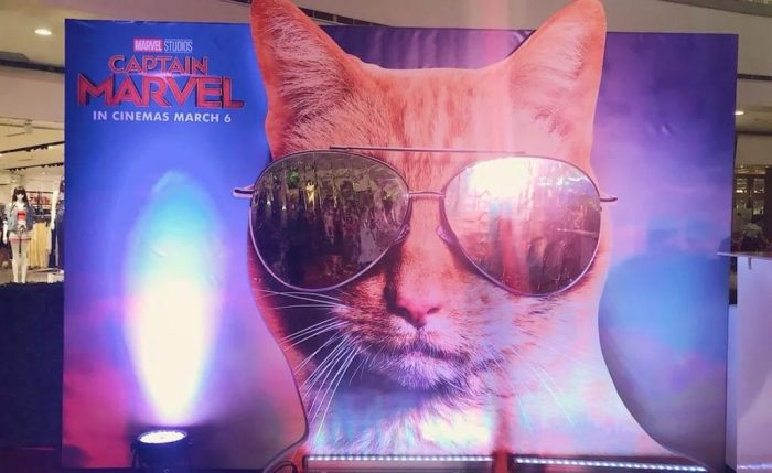 Captain Marvel Goose Theater Standee