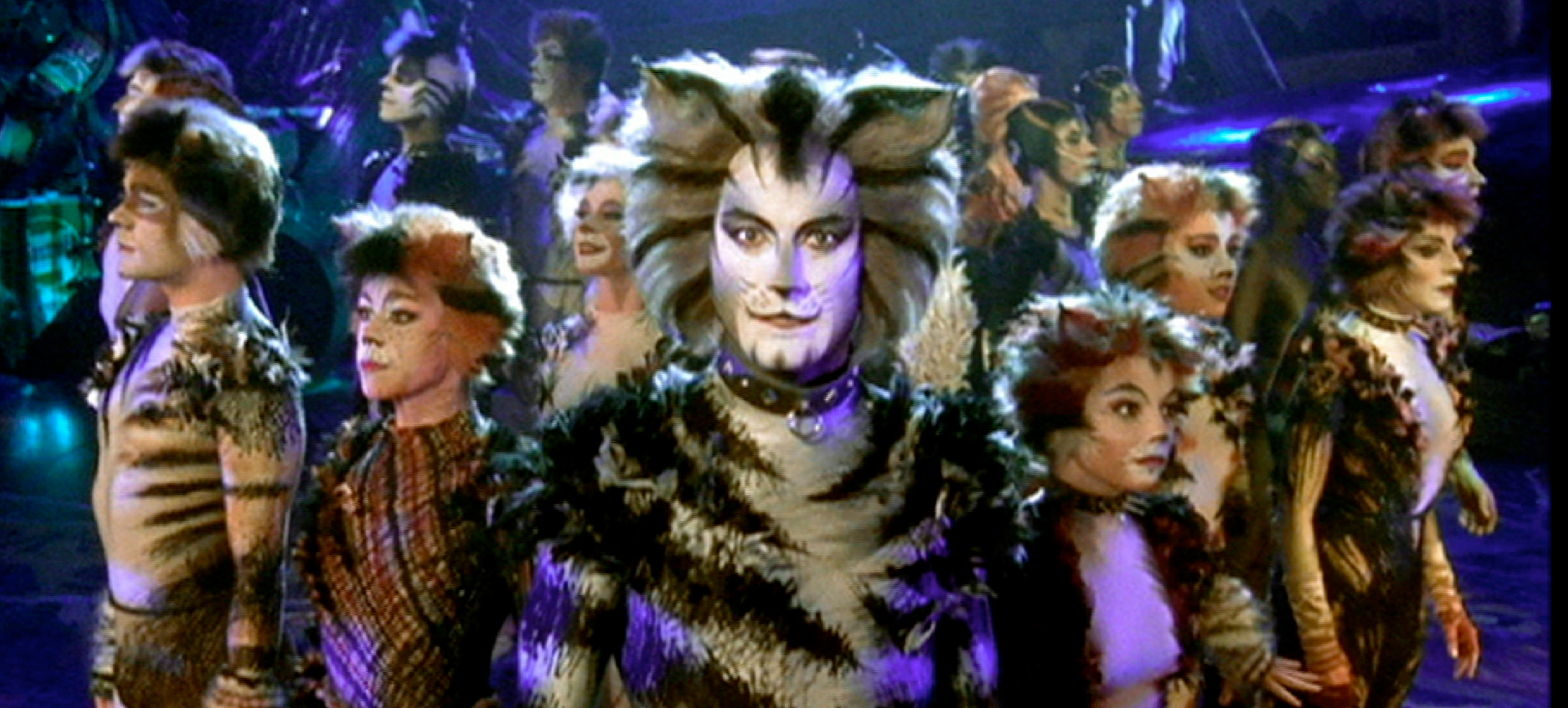 cats musical movie on the way from director tom hooper