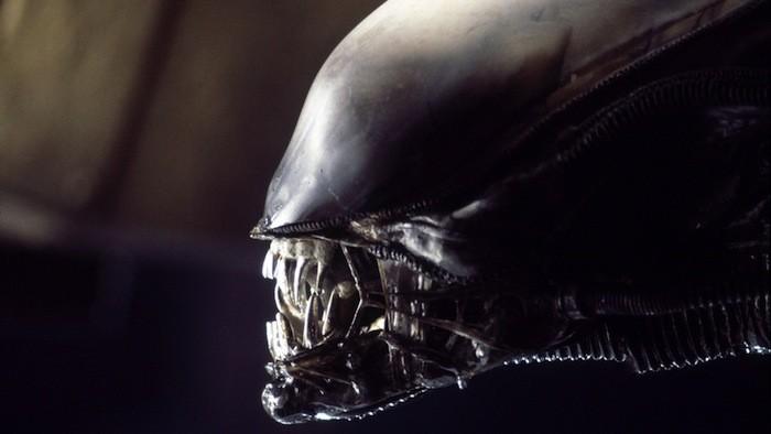 favorite movies alien