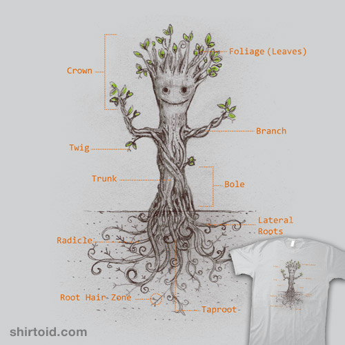 i-have-roots