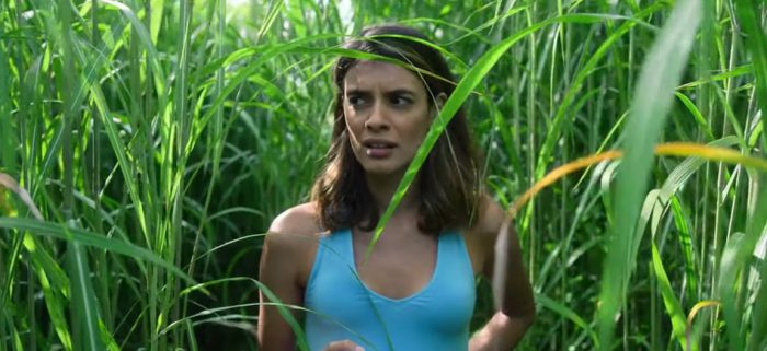 in the tall grass trailer