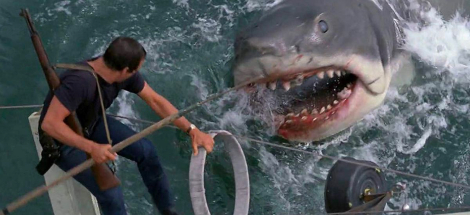 Jaws 4K Release Swimming Into Stores this Summer – /Film