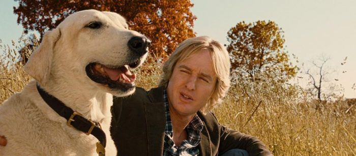 Marley and Me - Training Dog Actors