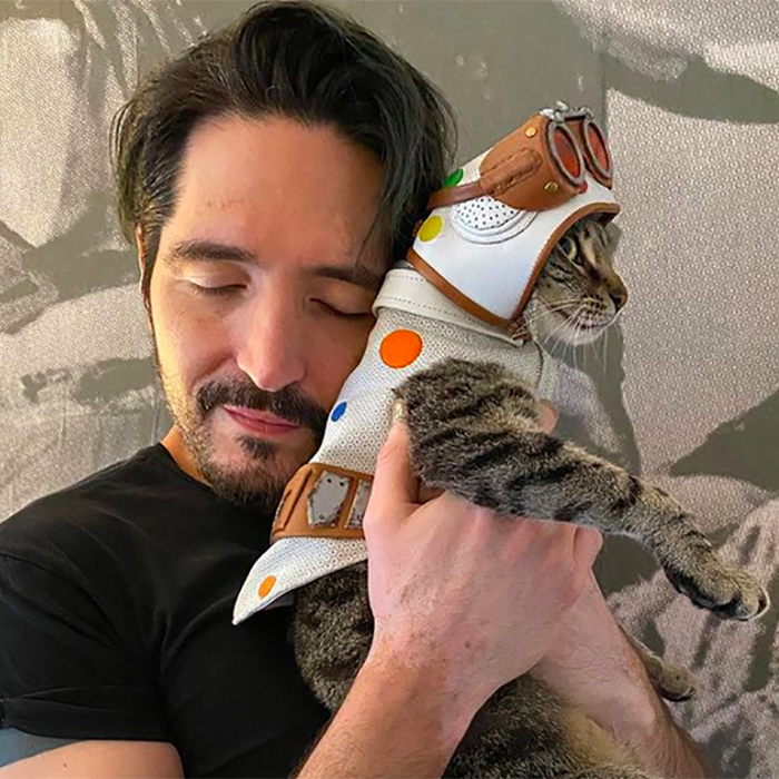Polka-Dot Cat and David Dastmalchian