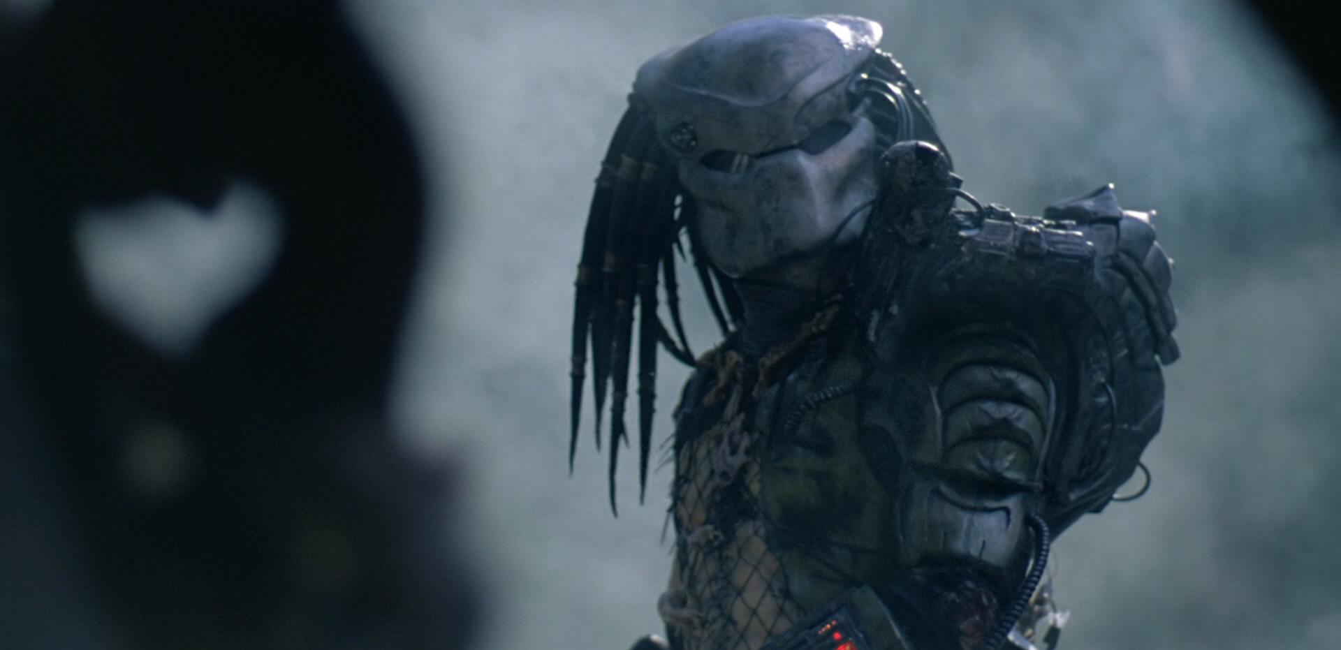 Image result for predator