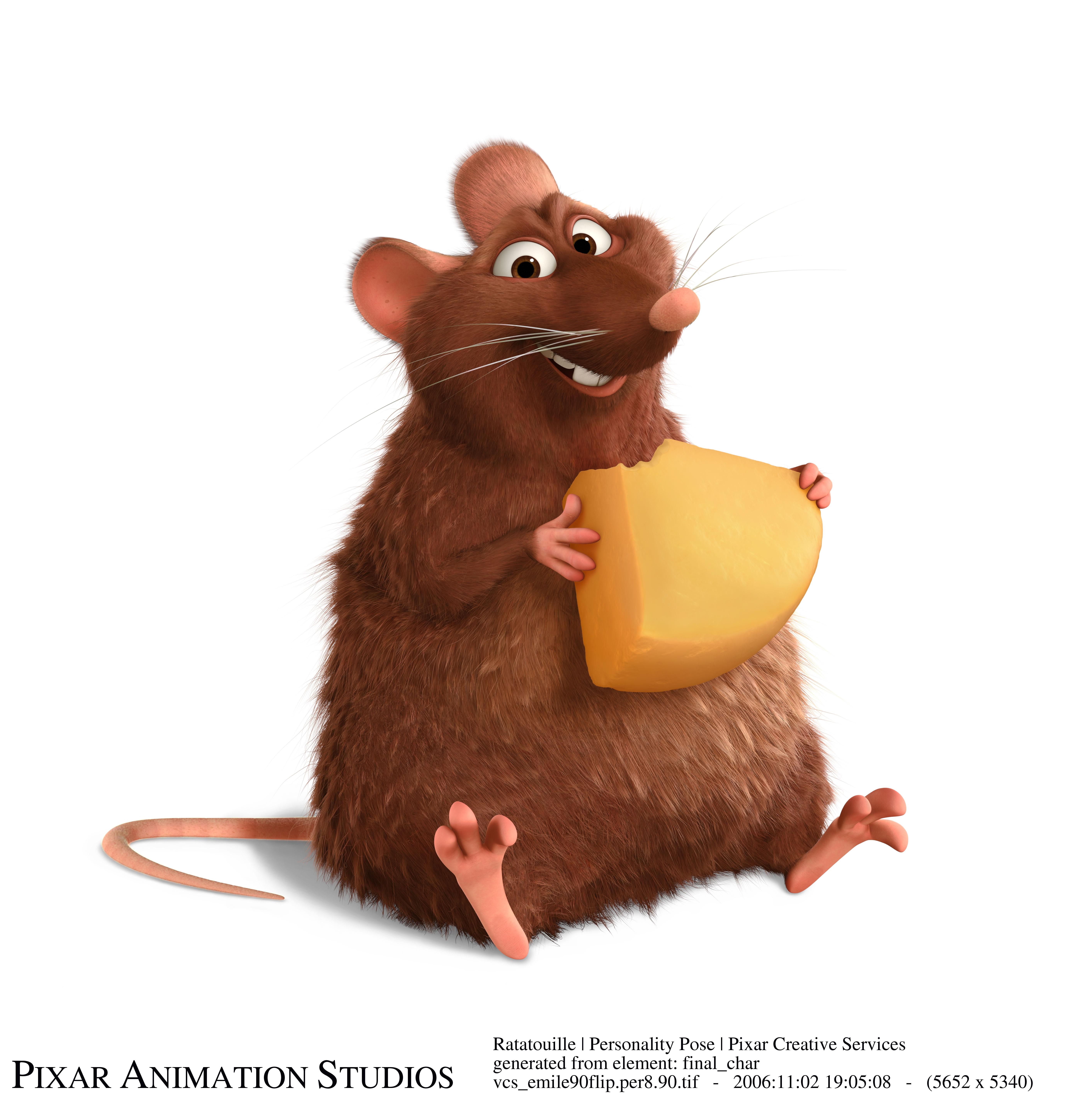 rat5.jpg