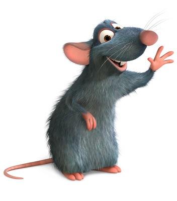 rat8.jpg