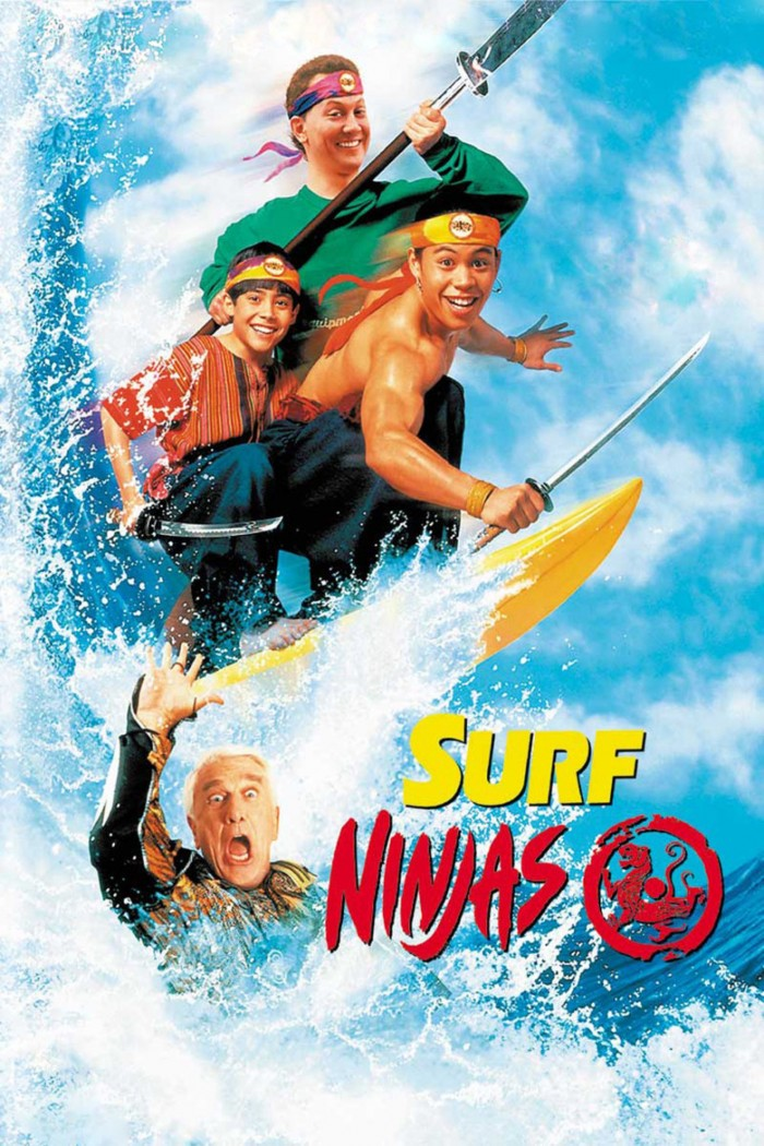 suft ninjas poster
