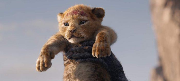 the lion king sequel