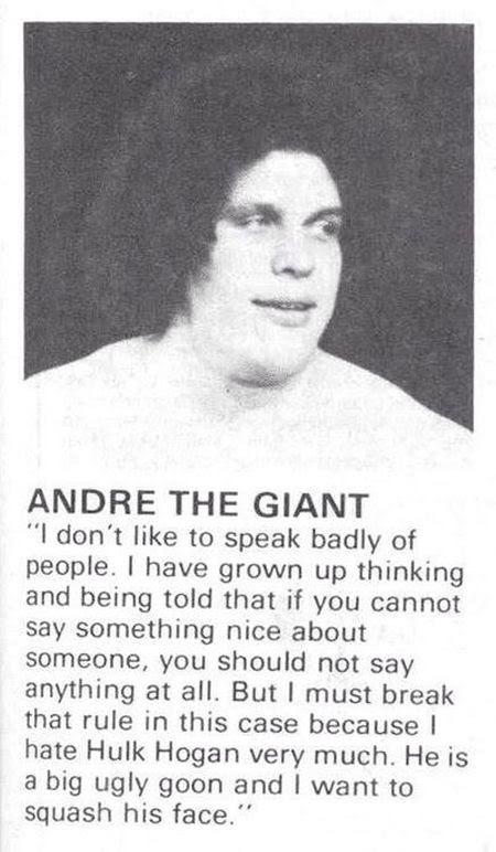 andre the giant hulk hogan