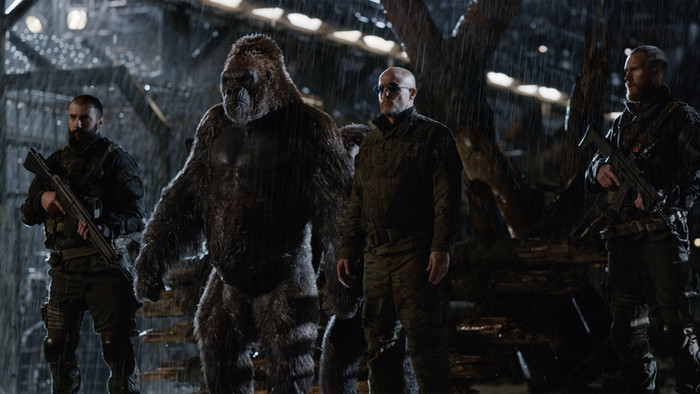 war for the apes
