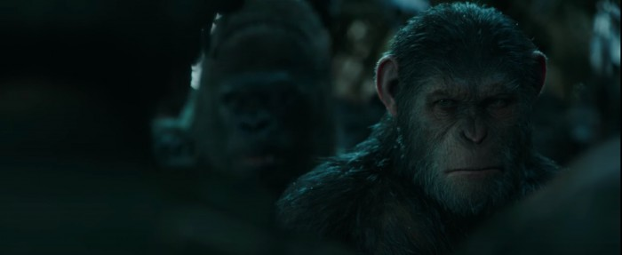 war for the planet of the apes ceasar fort